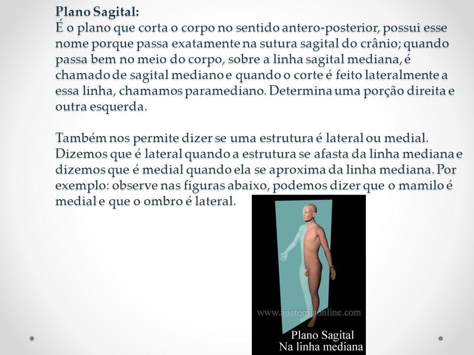 Plano Sagital: É o plano que corta o corpo no sentido antero-posterior, possui esse nome porque passa exatamente na sutura sagital do crânio; quando p
