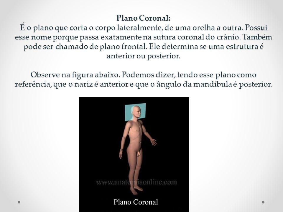 Plano Coronal: É o plano que corta o corpo lateralmente, de uma orelha a outra. Possui esse nome porque passa exatamente na sutura coronal do crânio.