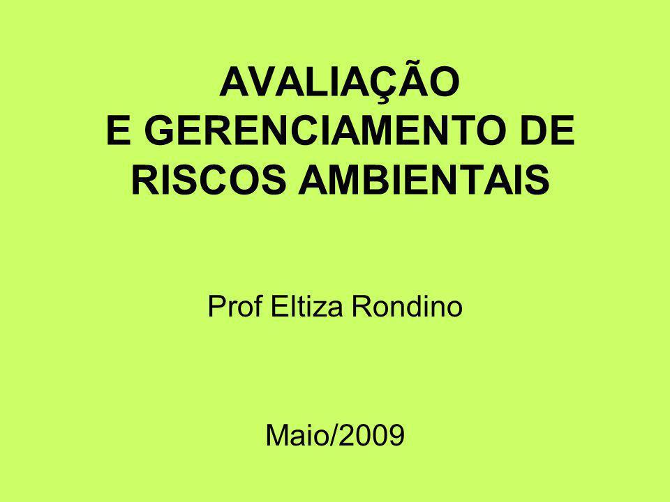 AVALIAÇÃO E GERENCIAMENTO DE RISCOS AMBIENTAIS Prof Eltiza Rondino Maio/2009