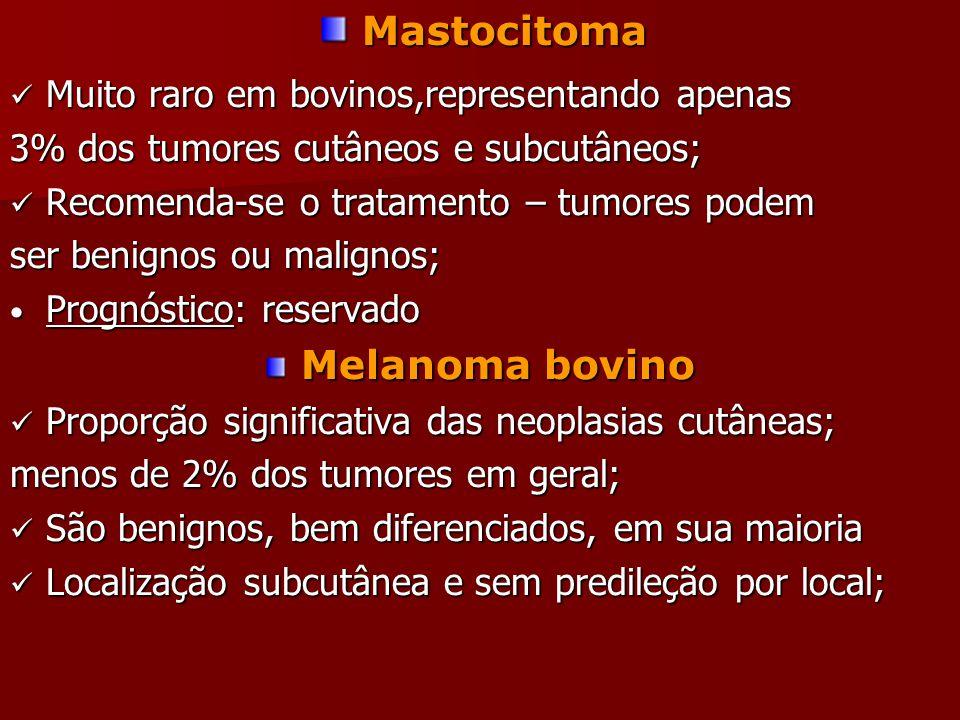 Mastocitoma Mastocitoma Muito raro em bovinos,representando apenas Muito raro em bovinos,representando apenas 3% dos tumores cutâneos e subcutâneos; Recomenda-se o tratamento – tumores podem Recomenda-se o tratamento – tumores podem ser benignos ou malignos; Prognóstico: reservado Prognóstico: reservado Melanoma bovino Proporção significativa das neoplasias cutâneas; Proporção significativa das neoplasias cutâneas; menos de 2% dos tumores em geral; São benignos, bem diferenciados, em sua maioria São benignos, bem diferenciados, em sua maioria Localização subcutânea e sem predileção por local; Localização subcutânea e sem predileção por local;
