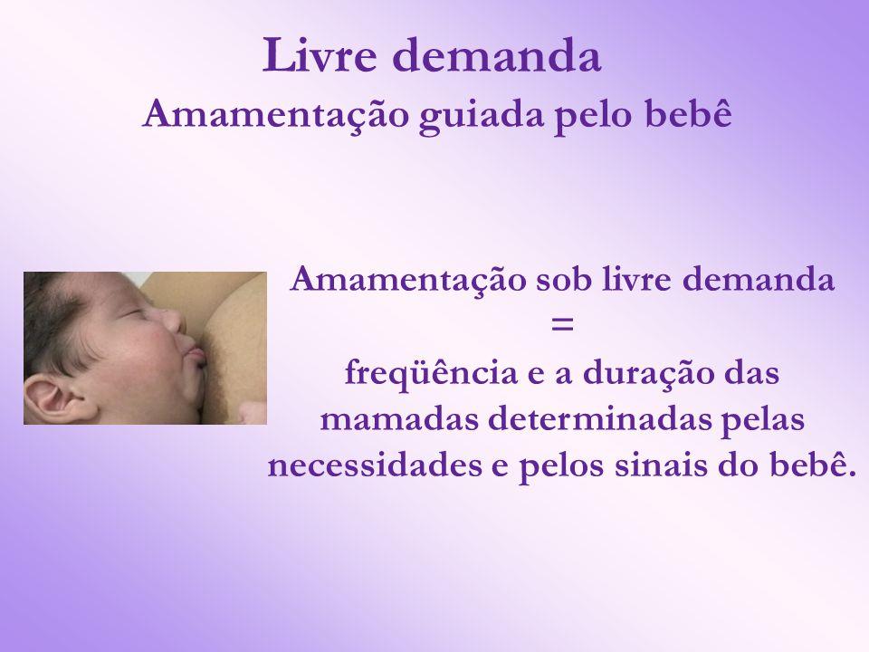 Livre demanda Amamentação guiada pelo bebê Amamentação sob livre demanda = freqüência e a duração das mamadas determinadas pelas necessidades e pelos