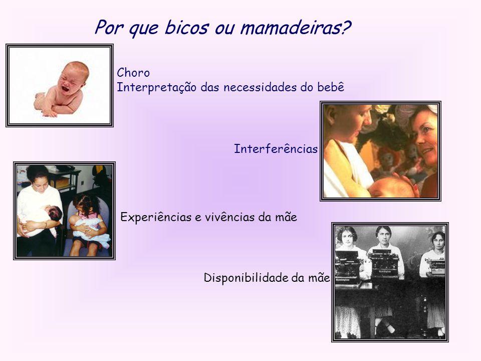 Por que bicos ou mamadeiras? Choro Interpretação das necessidades do bebê Interferências Experiências e vivências da mãe Disponibilidade da mãe