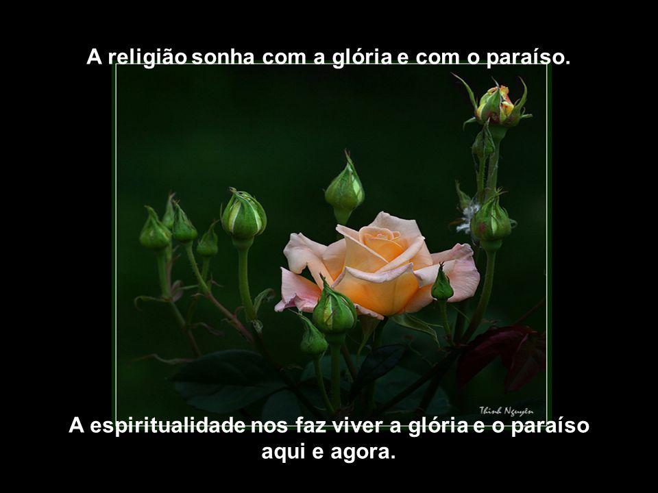 A religião é adoração. A espiritualidade é Meditação.
