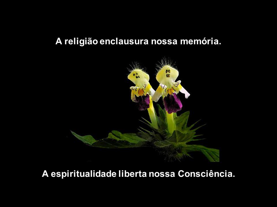 A religião vive no passado e no futuro. A espiritualidade vive no presente.