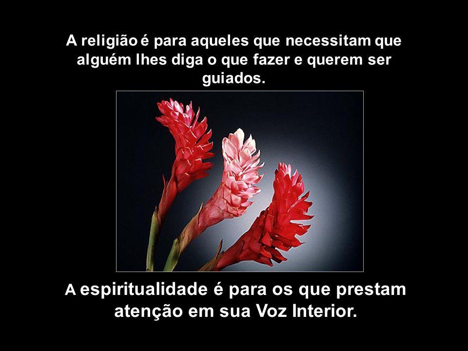 A religião é para aqueles que necessitam que alguém lhes diga o que fazer e querem ser guiados.