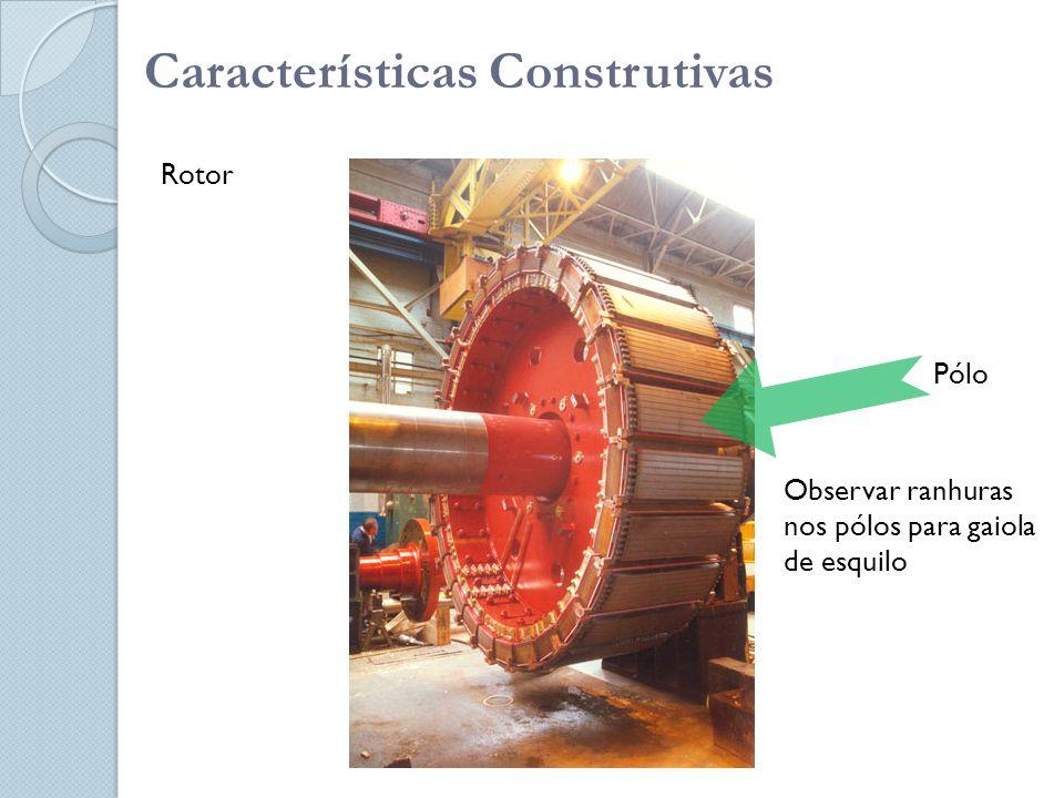 Características Construtivas Rotor Pólo Observar ranhuras nos pólos para gaiola de esquilo
