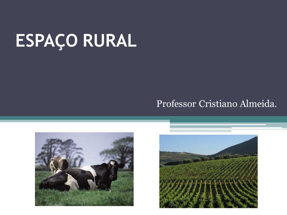ESPAÇO RURAL Professor Cristiano Almeida.