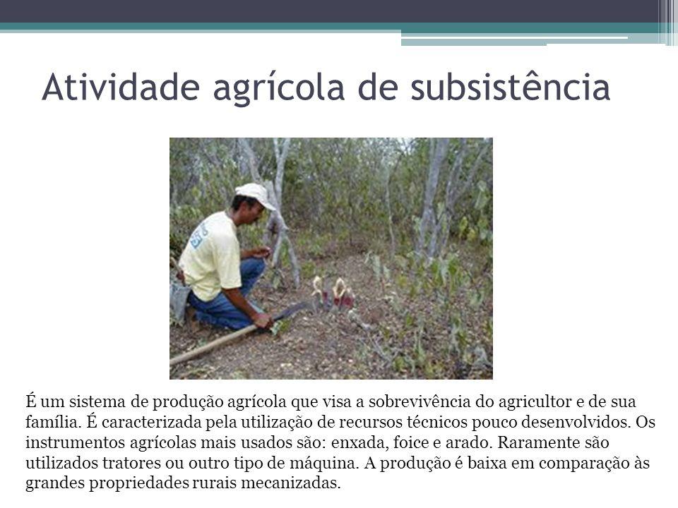 Atividade agrícola de subsistência É um sistema de produção agrícola que visa a sobrevivência do agricultor e de sua família. É caracterizada pela uti