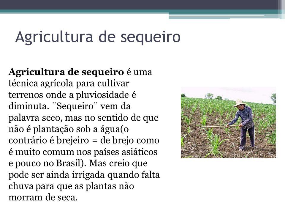 Agricultura de sequeiro Agricultura de sequeiro é uma técnica agrícola para cultivar terrenos onde a pluviosidade é diminuta. ¨Sequeiro¨ vem da palavr
