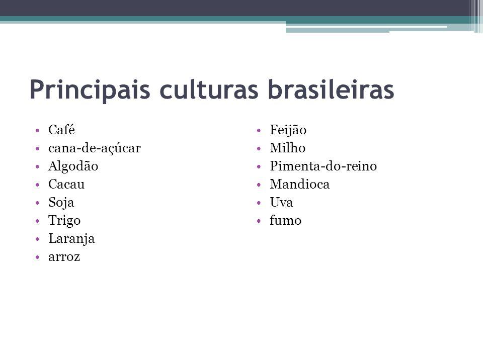 Principais culturas brasileiras Café cana-de-açúcar Algodão Cacau Soja Trigo Laranja arroz Feijão Milho Pimenta-do-reino Mandioca Uva fumo