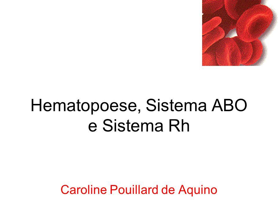 Hematopoese, Sistema ABO e Sistema Rh Caroline Pouillard de Aquino