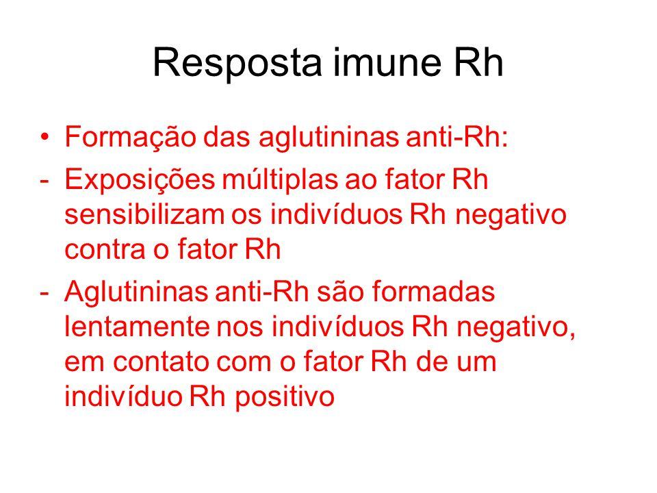 Resposta imune Rh Formação das aglutininas anti-Rh: -Exposições múltiplas ao fator Rh sensibilizam os indivíduos Rh negativo contra o fator Rh -Agluti