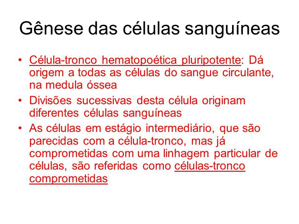 TIPOS SANGUÍNEOS ABO Antígenos A e B- Aglutinogênios -Ocorrem na superfície das hemácias em uma grande proporção de seres humanos.