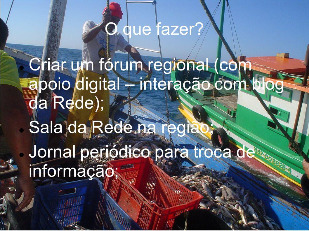 O que fazer? Criar um fórum regional (com apoio digital – interação com blog da Rede); Sala da Rede na região; Jornal periódico para troca de informaç
