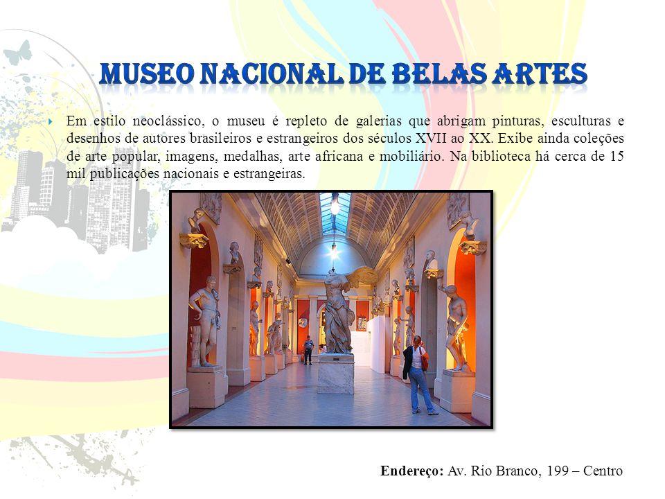  Em estilo neoclássico, o museu é repleto de galerias que abrigam pinturas, esculturas e desenhos de autores brasileiros e estrangeiros dos séculos XVII ao XX.