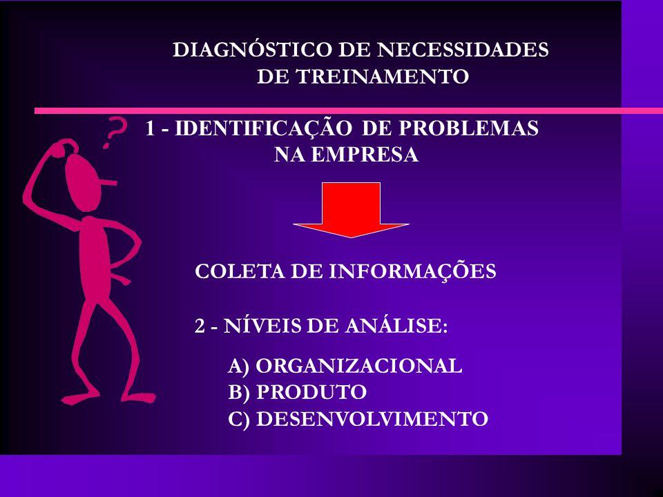 DIAGNÓSTICO DE NECESSIDADES DE TREINAMENTO 1 - IDENTIFICAÇÃO DE PROBLEMAS NA EMPRESA COLETA DE INFORMAÇÕES 2 - NÍVEIS DE ANÁLISE: A) ORGANIZACIONAL B)