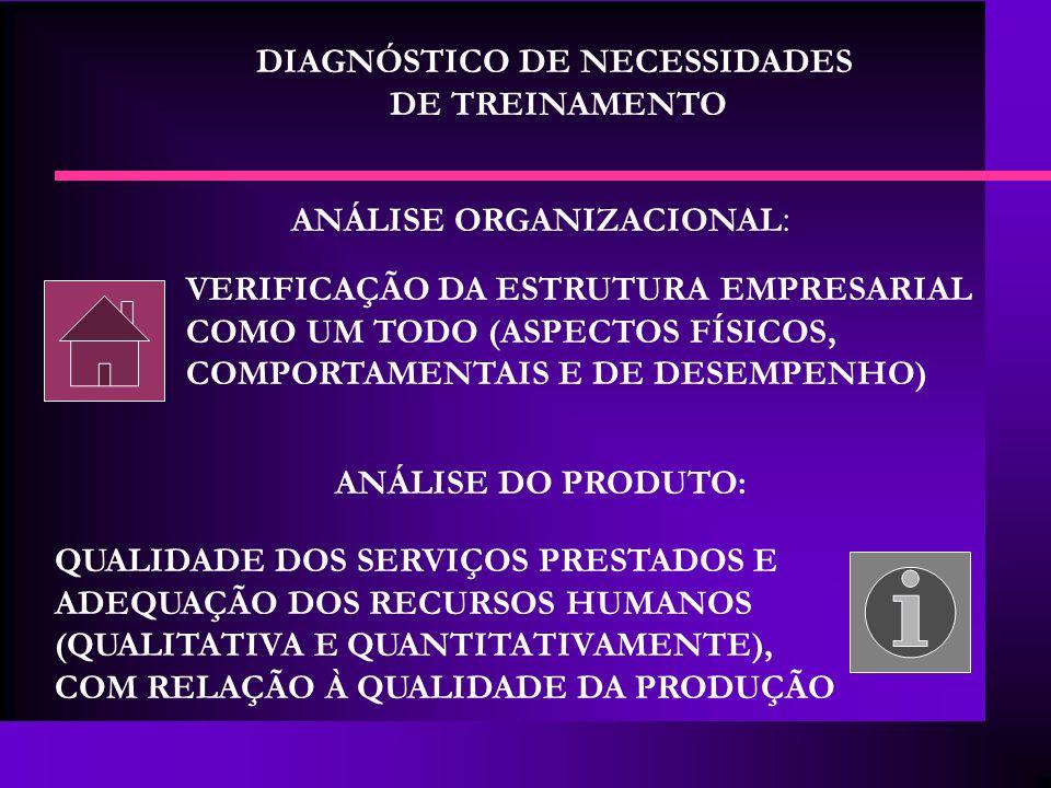 DIAGNÓSTICO DE NECESSIDADES DE TREINAMENTO ANÁLISE ORGANIZACIONAL : VERIFICAÇÃO DA ESTRUTURA EMPRESARIAL COMO UM TODO (ASPECTOS FÍSICOS, COMPORTAMENTA