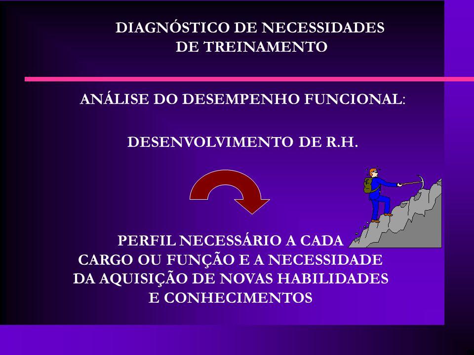 DIAGNÓSTICO DE NECESSIDADES DE TREINAMENTO ANÁLISE DO DESEMPENHO FUNCIONAL : DESENVOLVIMENTO DE R.H. PERFIL NECESSÁRIO A CADA CARGO OU FUNÇÃO E A NECE