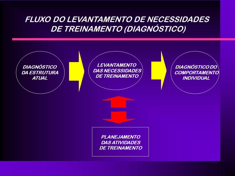 FLUXO DO LEVANTAMENTO DE NECESSIDADES DE TREINAMENTO (DIAGNÓSTICO) DIAGNÓSTICO DA ESTRUTURA ATUAL LEVANTAMENTO DAS NECESSIDADES DE TREINAMENTO DIAGNÓS