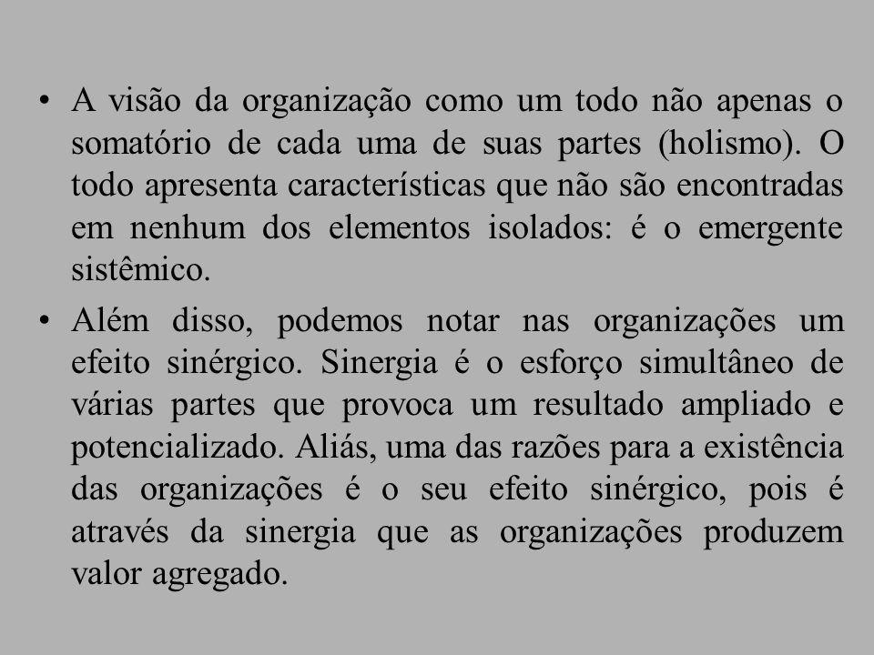 A visão da organização como um todo não apenas o somatório de cada uma de suas partes (holismo).