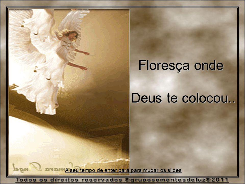 Floresça onde Deus te colocou.. A seu tempo de enter para para mudar os slides