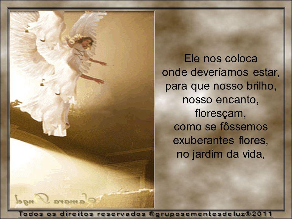 Ele nos coloca onde deveríamos estar, para que nosso brilho, nosso encanto, floresçam, como se fôssemos exuberantes flores, no jardim da vida,