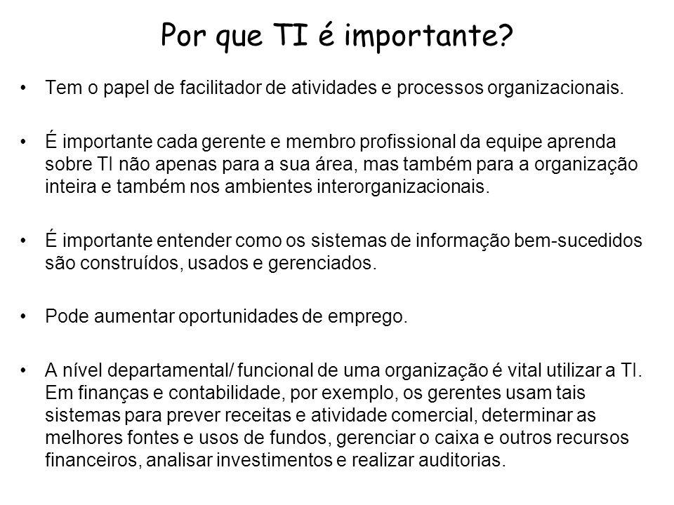 Por que TI é importante? Tem o papel de facilitador de atividades e processos organizacionais. É importante cada gerente e membro profissional da equi