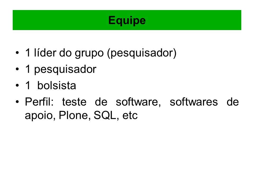Equipe 1 líder do grupo (pesquisador) 1 pesquisador 1 bolsista Perfil: teste de software, softwares de apoio, Plone, SQL, etc