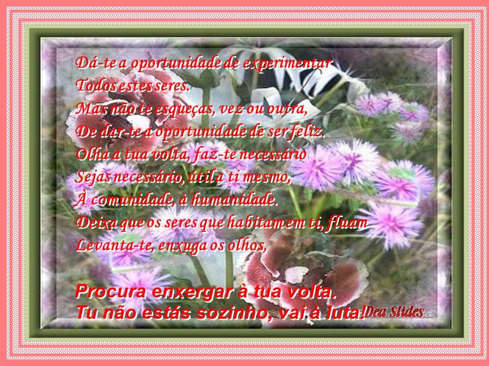 A vida é feita de momentos Bons e ruins, alegres ou tristes Tu és feito de vários tus Forte ou fraco Alegre ou triste Corajoso ou covarde Honesto consigo mesmo Desonesto com teus sentimentos.