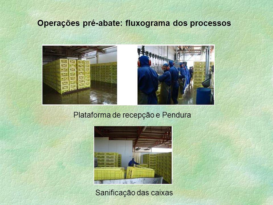 Operações pré-abate: fluxograma dos processos Plataforma de recepção e Pendura Sanificação das caixas