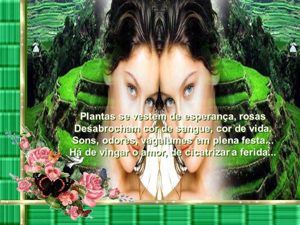 A primavera chegou, seu perfume Está no ar, flores enfeitam a cidade, Pássaros entoam hinos à natureza... Namorados se beijam com suavidade. A primave