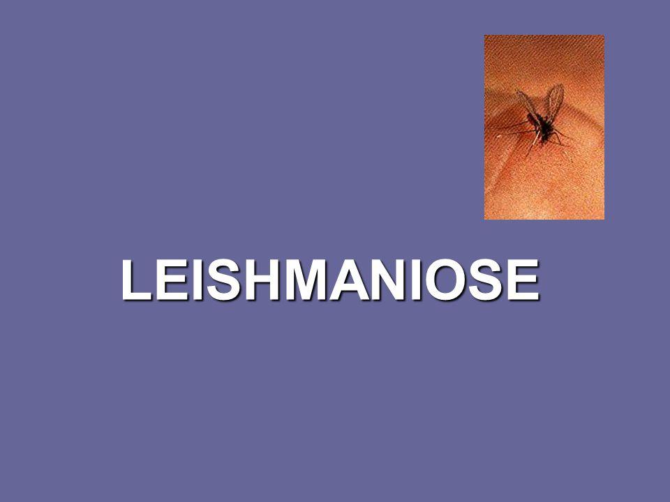 Leishmaniose Referências: Chin J, et all.El Control de las Enfermedades Transmisibles.