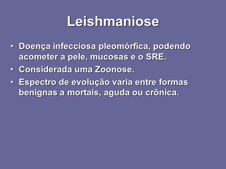 Leishmaniose Doença infecciosa pleomórfica, podendo acometer a pele, mucosas e o SRE.Doença infecciosa pleomórfica, podendo acometer a pele, mucosas e