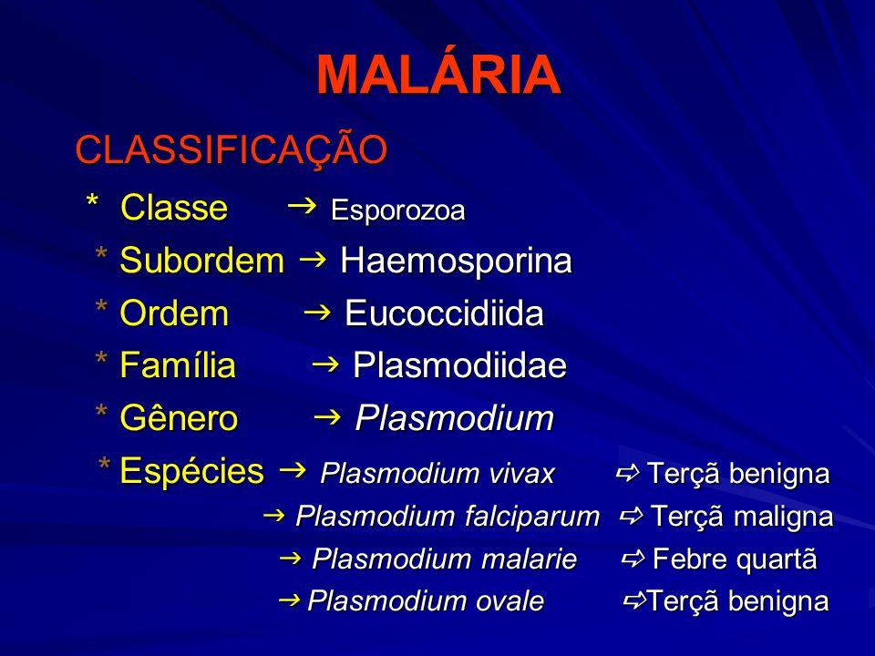 Treatmento da Malaria Infecção por Plasmodium falciparum l Cloroquino sensível l Só Cloroquina l Àreas com resistência a Cloroquina l Quinino + tetracicline l Quinino + sulfadoxine/pirimetamine l Quinino + clindamicina