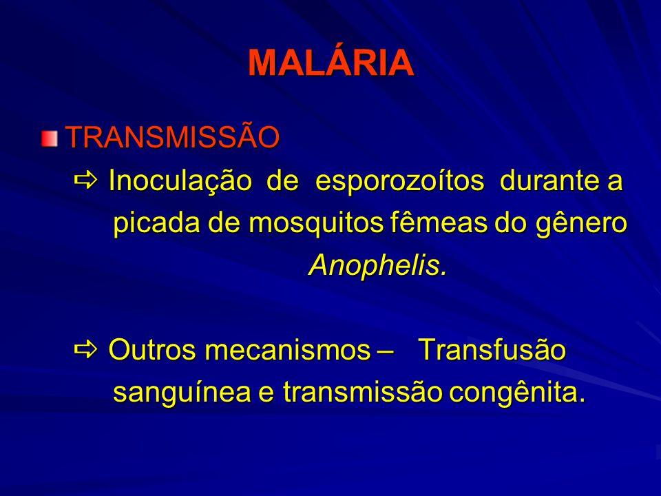 MALÁRIA EPIDEMIOLOGIA Gametóforo (pacientes infectados)  Mosquito transmissor  Homem susceptível (Para que exista a presença da malária em uma região) Gametóforo (pacientes infectados)  Mosquito transmissor  Homem susceptível (Para que exista a presença da malária em uma região)  Não são todos os pacientes que apresentam gametócitos circulantes  Não são todos os pacientes que apresentam gametócitos circulantes  Não são todas as espécies de Anopheles que são boas transmissoras  Não são todas as espécies de Anopheles que são boas transmissoras  A distribuição geográfica do plasmódio esta ligada a presença do vetor  A distribuição geográfica do plasmódio esta ligada a presença do vetor  As raças negra e amarela são mais resistentes;  As raças negra e amarela são mais resistentes;  Pessoas com malformações hemoglobínicas também são resistentes  Pessoas com malformações hemoglobínicas também são resistentes