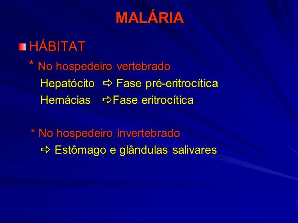 Malária :Sinais de Alerta Parasitemia > 2% Primoinfecção p/ P.falciparum Cefaléia persistente Dispnéia Confusão mental Anemia pronunciada Diminuição da diurese Icterícia intensa
