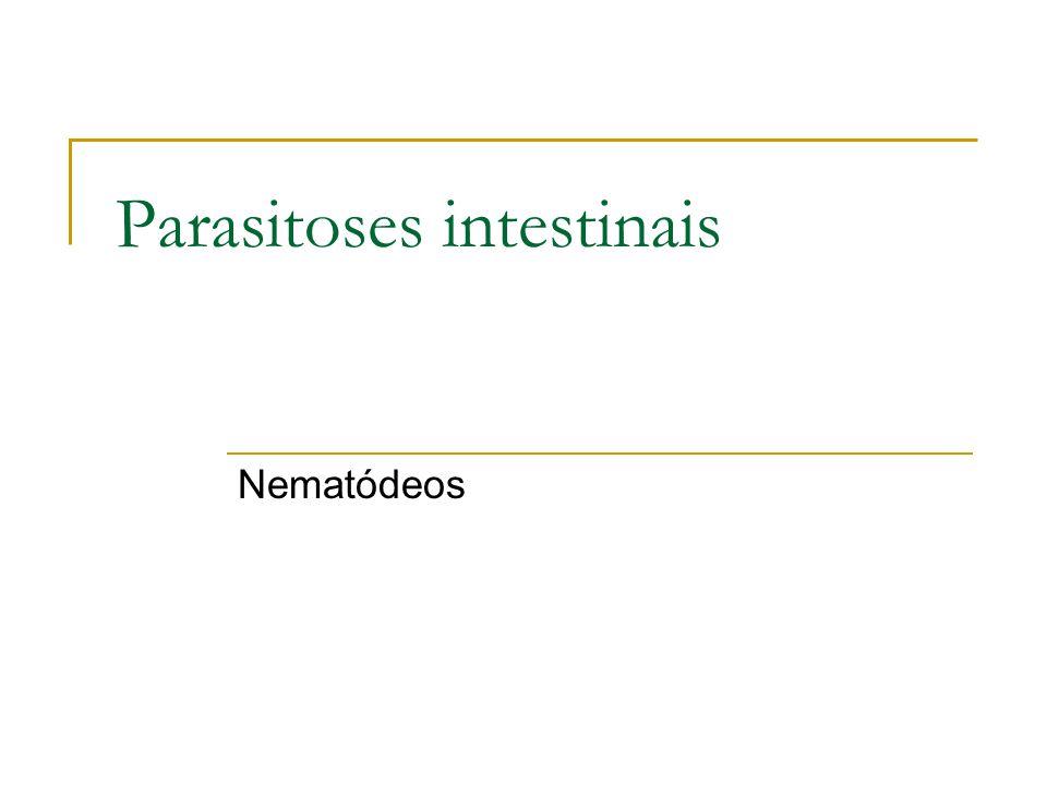 Parasitoses intestinais Nematódeos
