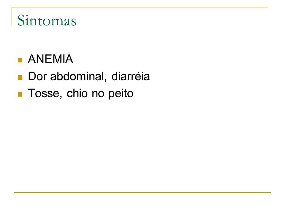 Sintomas ANEMIA Dor abdominal, diarréia Tosse, chio no peito