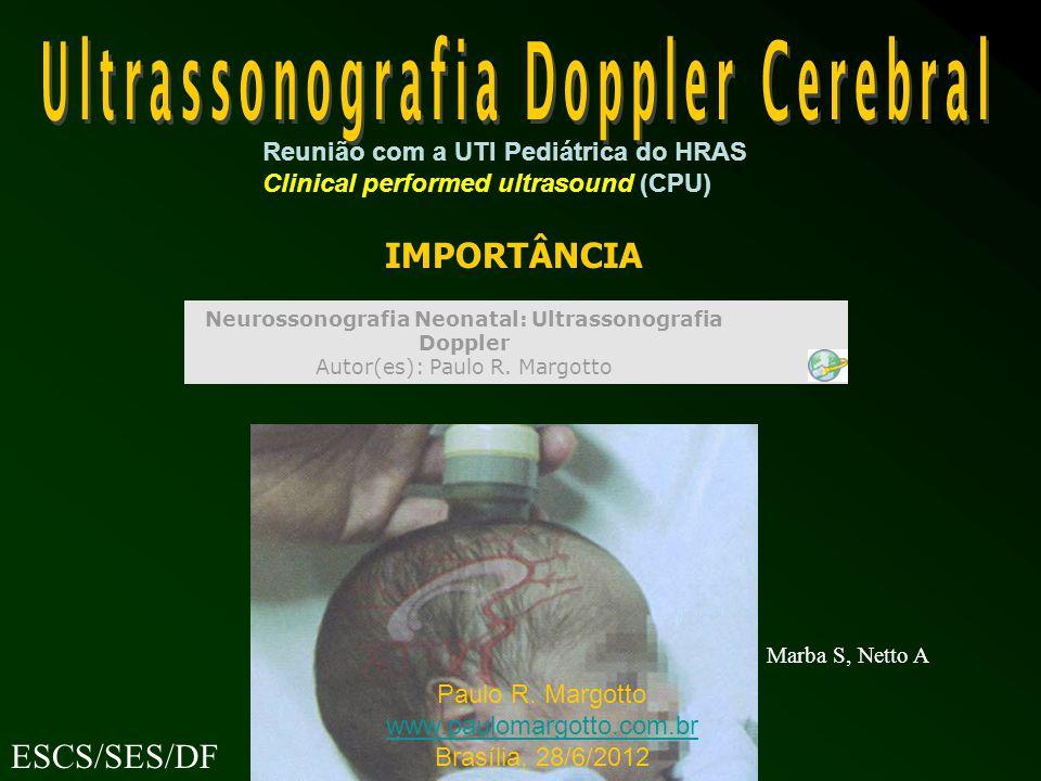 IMPORTÂNCIA ESCS/SES/DF Marba S, Netto A Paulo R.