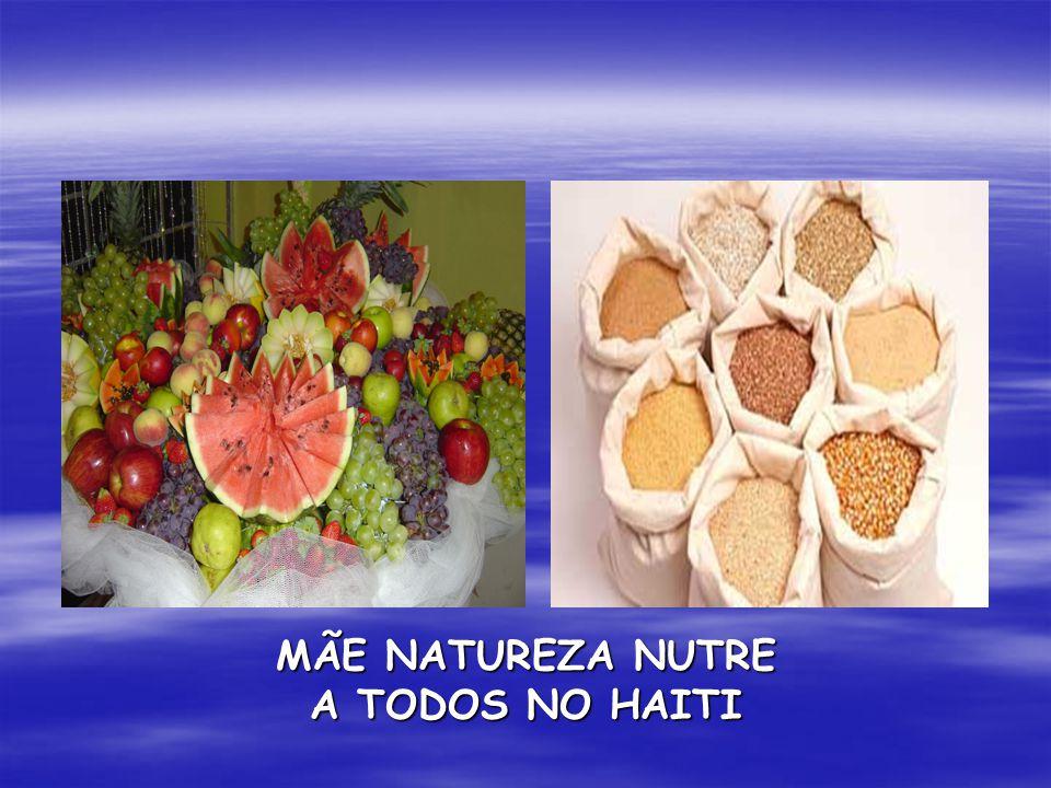 MÃE NATUREZA NUTRE A TODOS NO HAITI