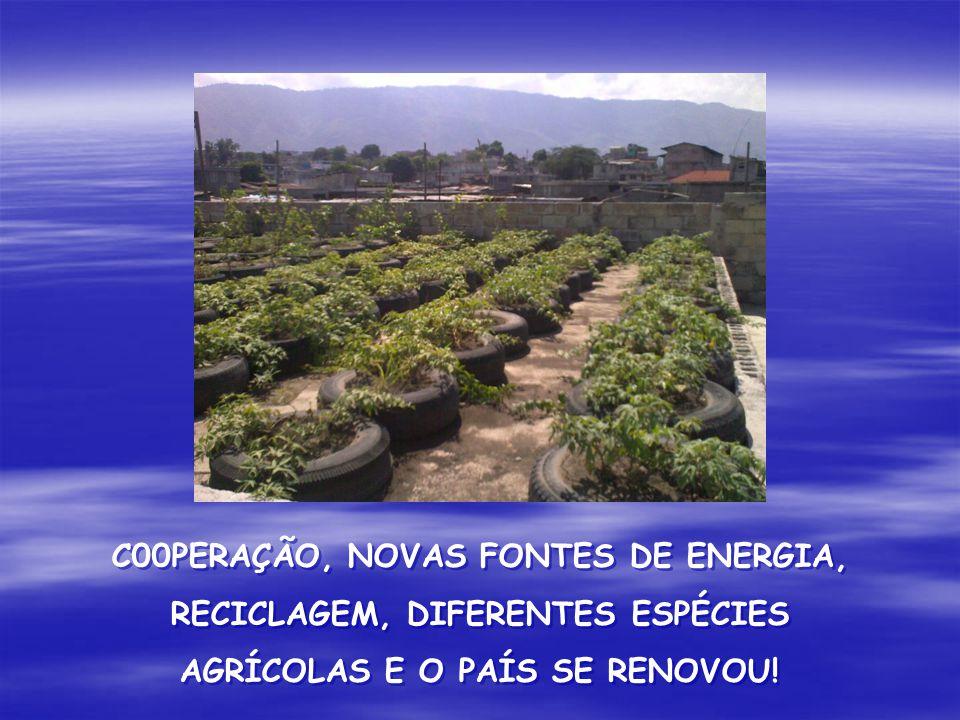 C00PERAÇÃO, NOVAS FONTES DE ENERGIA, RECICLAGEM, DIFERENTES ESPÉCIES AGRÍCOLAS E O PAÍS SE RENOVOU!