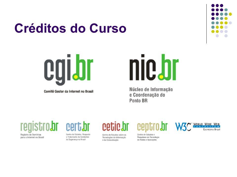 Comitê Gestor da Internet no Brasil Fomentar o desenvolvimento da internet no Brasil; Recomendar padrões e procedimentos relacionados à internet; Coletar, organizar e disseminar informações relacionadas à internet, como por exemplo, indicadores e estatísticas; Gerenciar os domínios.br e a atribuição de números IP no país.
