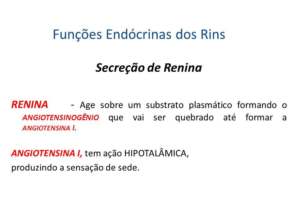 Funções Endócrinas dos Rins Secreção de Renina RENINA- Age sobre um substrato plasmático formando o ANGIOTENSINOGÊNIO que vai ser quebrado até formar