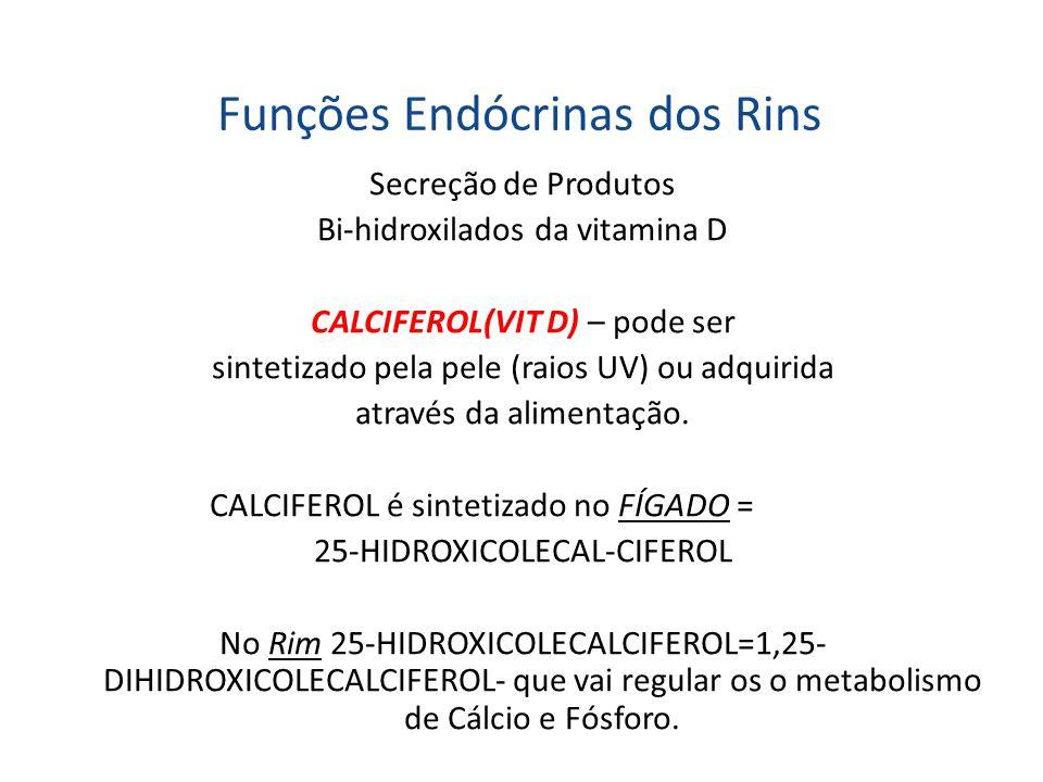 Funções Endócrinas dos Rins Secreção de Produtos Bi-hidroxilados da vitamina D CALCIFEROL(VIT D) – pode ser sintetizado pela pele (raios UV) ou adquir