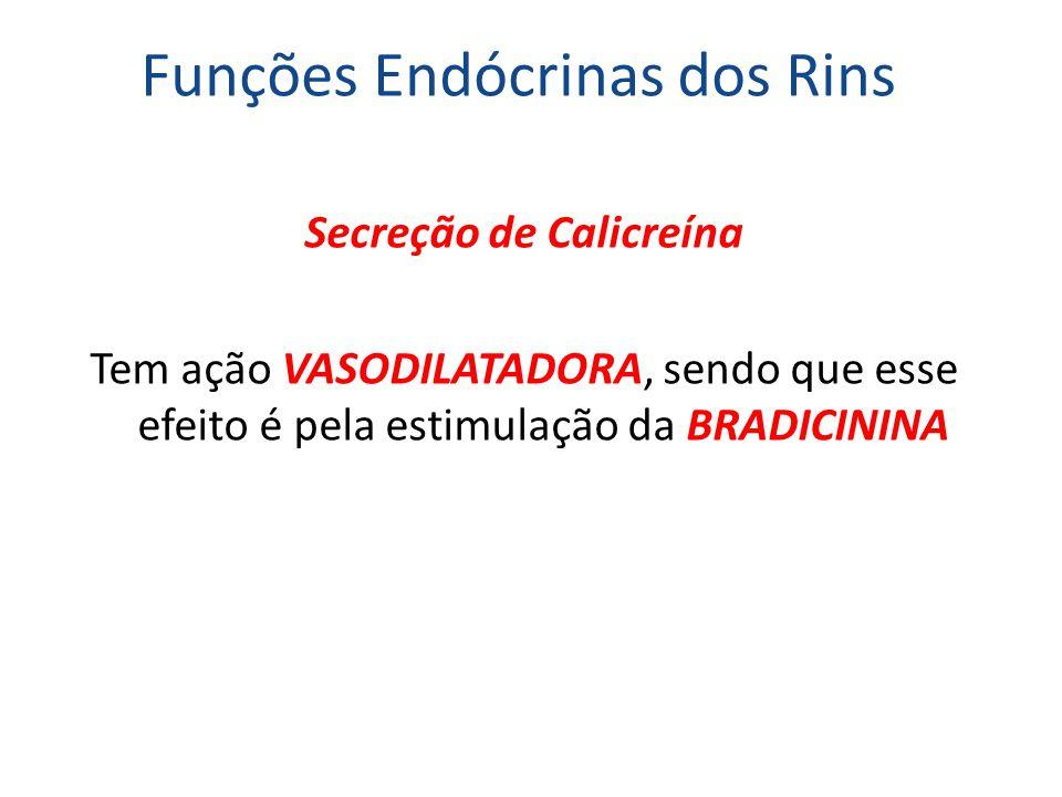 Funções Endócrinas dos Rins Secreção de Calicreína Tem ação VASODILATADORA, sendo que esse efeito é pela estimulação da BRADICININA