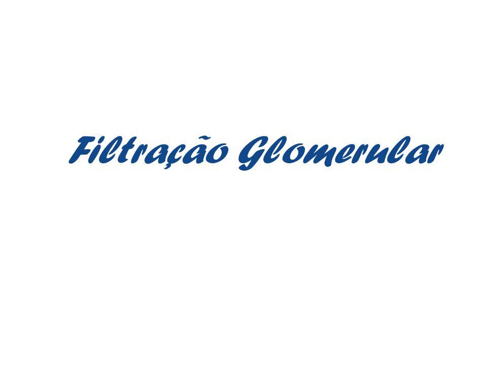 Filtração Glomerular