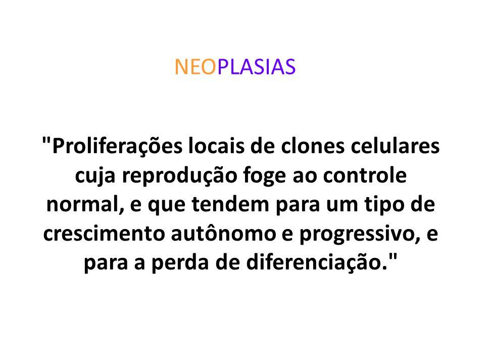 Constituição dos tumores: -parênquima: células neoplásicas -estroma de sustentação: tecido conjuntivo e vasos BIOLOGIA DO TUMOR