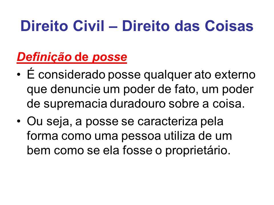Direito Civil – Direito das Coisas Definição de posse É considerado posse qualquer ato externo que denuncie um poder de fato, um poder de supremacia duradouro sobre a coisa.