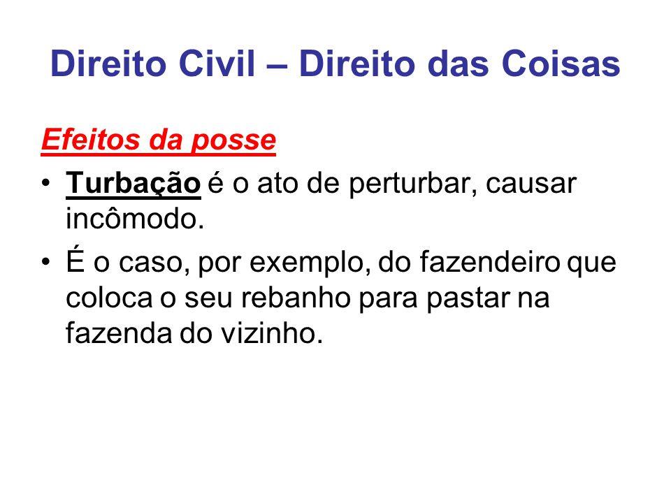Direito Civil – Direito das Coisas Efeitos da posse Turbação é o ato de perturbar, causar incômodo.