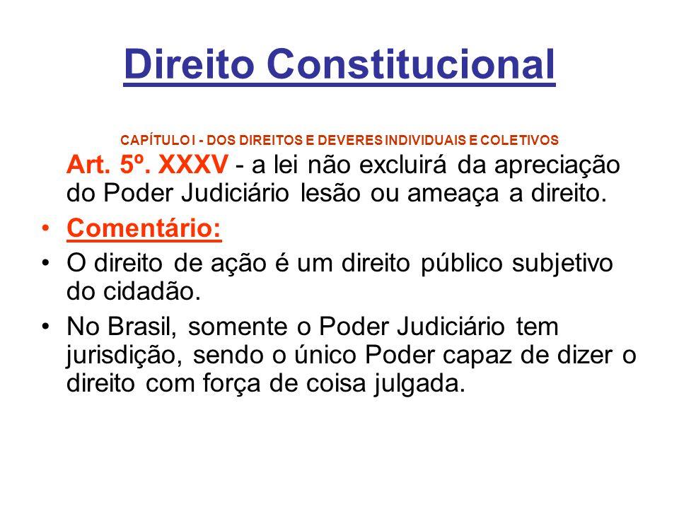 Direito Constitucional CAPÍTULO I - DOS DIREITOS E DEVERES INDIVIDUAIS E COLETIVOS Art. 5º. XXXV - a lei não excluirá da apreciação do Poder Judiciári